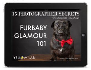 Best phone Photo tips
