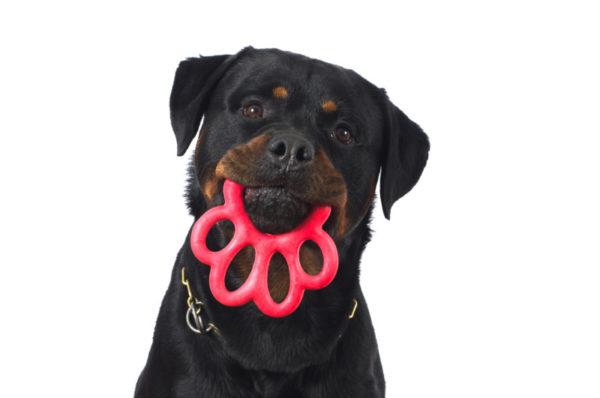 Bama paw toy red