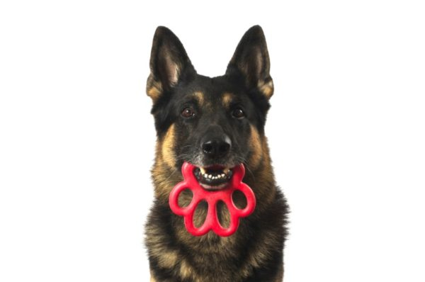 Red Bama Paw Toy